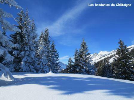 Petit Croisse Baulet - 0096