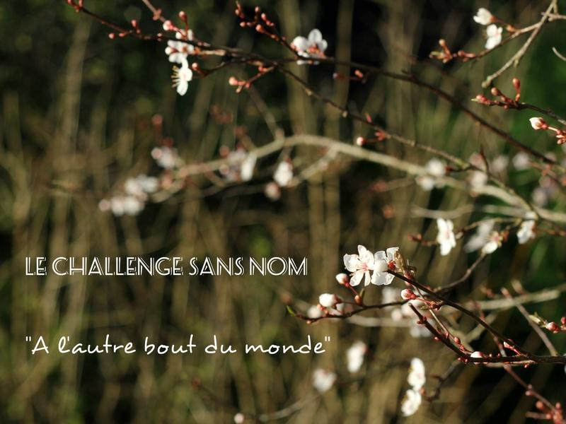 Challenge sans nom - A l'autre bout du monde