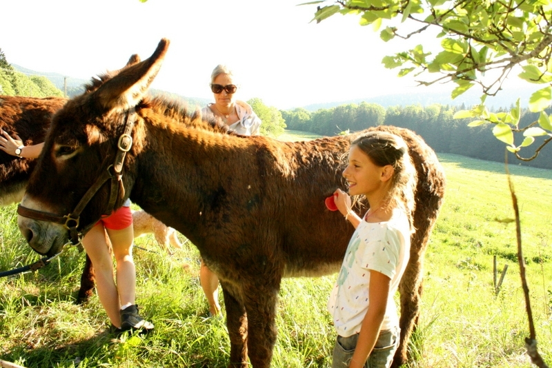 OK Corr'ânes 4 jours Vercors 698
