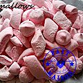 Marshmallows ( au thermomix )