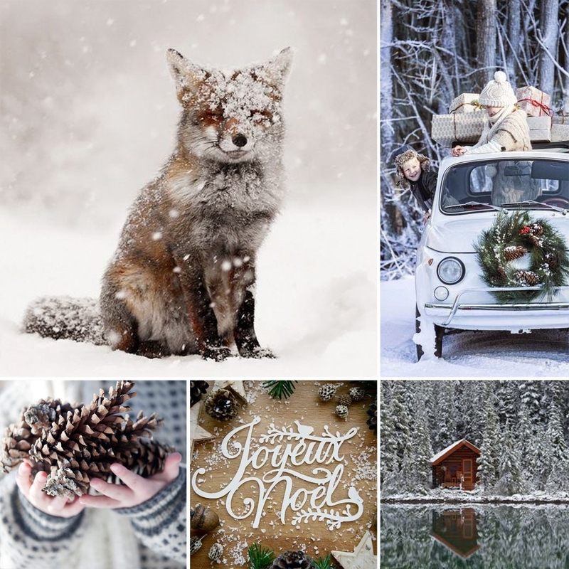Moodboard%20noël%20nature%20photography