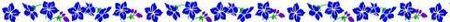 Frise-fleurs-bleues-mail[1]