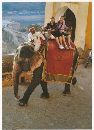 Inde - Eléphant - Laurence et Francois