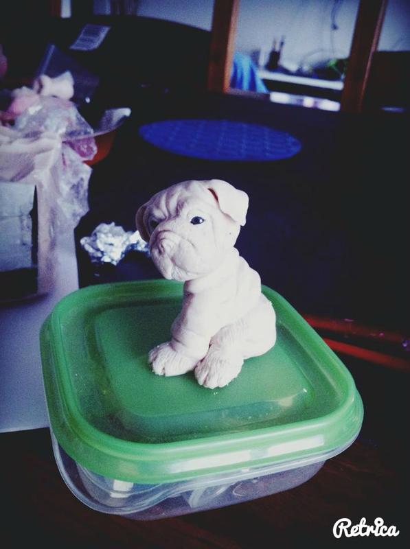 bulldog polymere