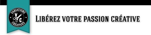 visuel logo VC