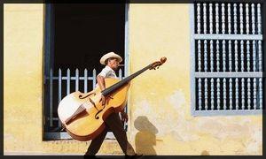 Cuba_contrebasse
