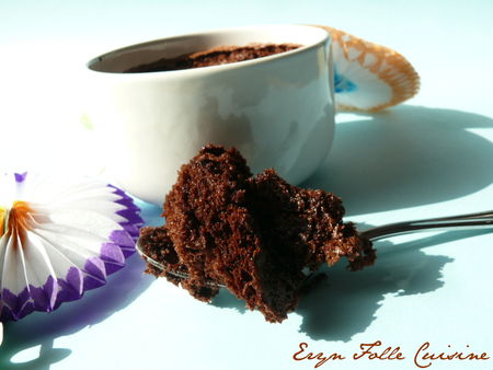 mousse_biscuitee_soufflee_cacao6