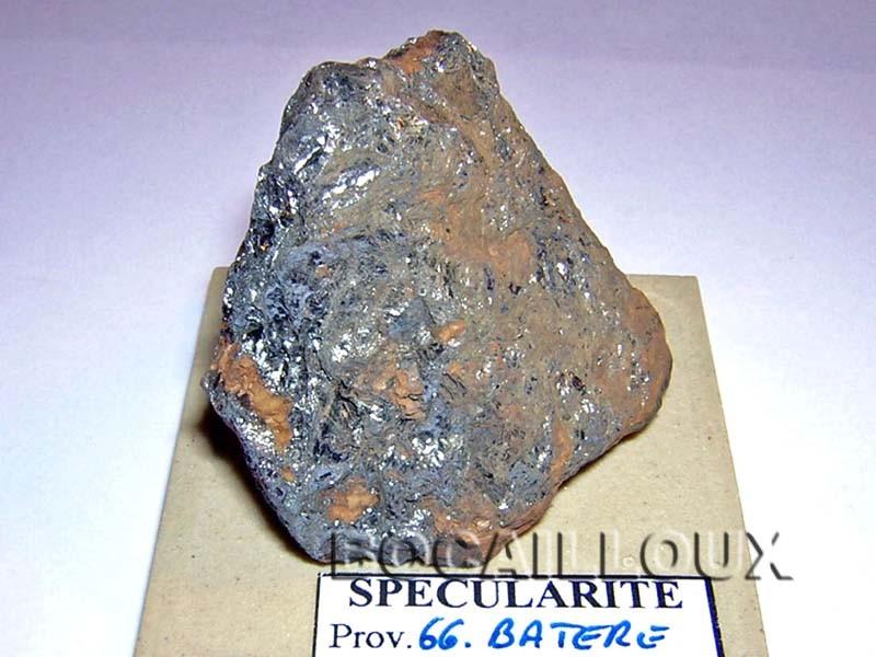 SPECULARITE S1349