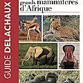 Identifier les grands mammifères africains : un guide photo pour le terrain !