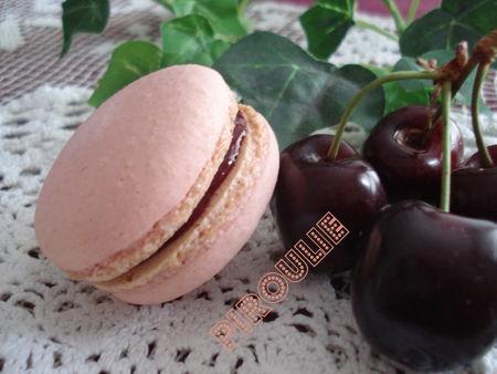 macarons_framboises__4_