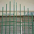 le seul fleuriste de Djibouti