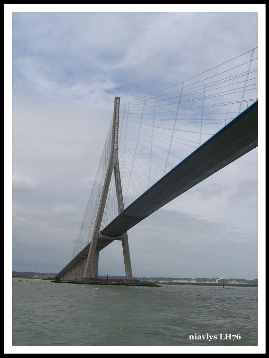 Pont de Normandie vue de la Seine 9