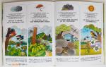 Livre-PETIT-TOM-Secrets-de-bois-7-muluBrok