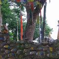 kathmandu 6 swayanbudnath