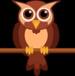 owl-2145244_960_720 - rogné