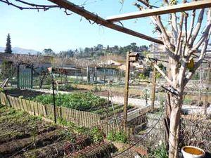 Jardins_Familiaux_Magali_Aiguier_et_Berre_Pastour_21_03_11_004