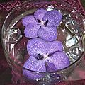 2012 09 14 nage d'orchidée