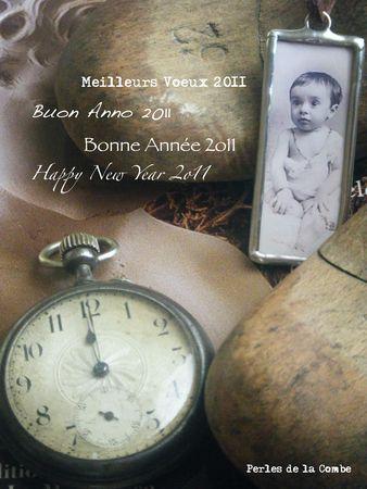 Bonne_Ann_e_2011_cartevisite