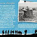 armistice 14-18 campagne-agriculture