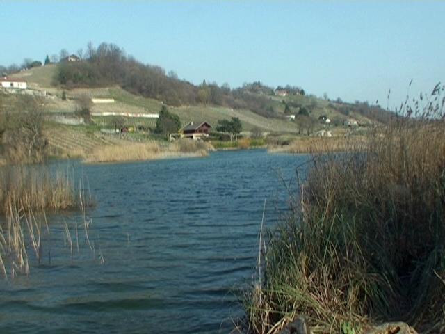 lac et belvédère