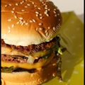 L'hamburger du lapin...