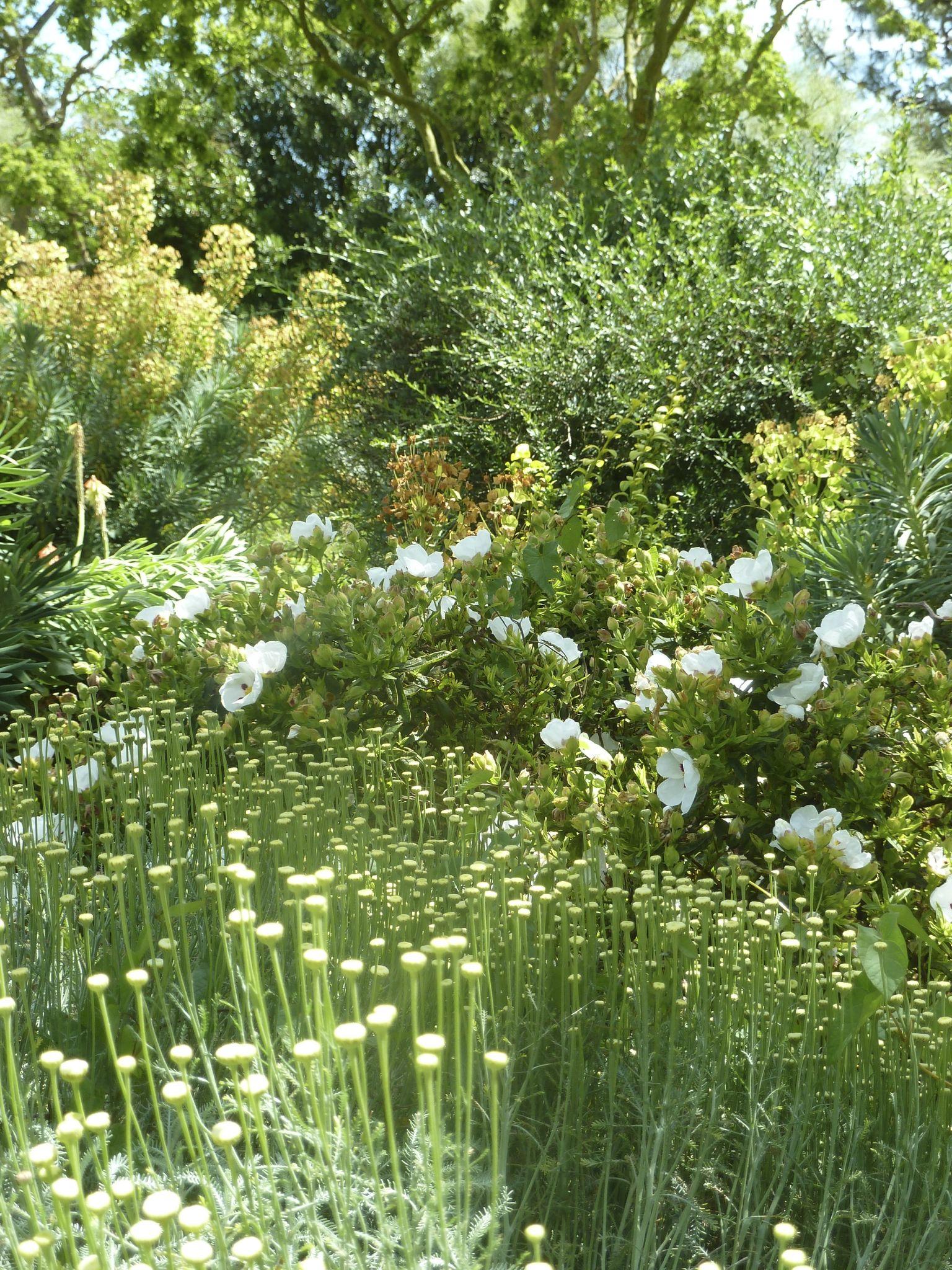 LA ROCHELLE - Jardin d'Orbigny