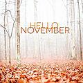 Mois de novembre