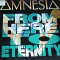 amnesia - from here to eternity
