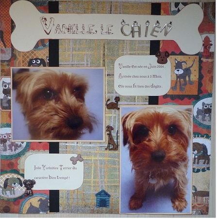 Vanille_le_chien_2___Oct_2010