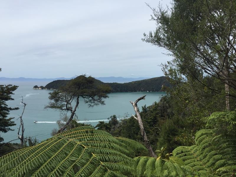 Abel_Tasman_Coast_Track_3
