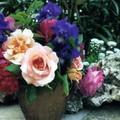 Bouquet dans le jardin