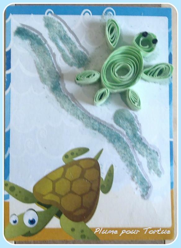 N° 7 tortue