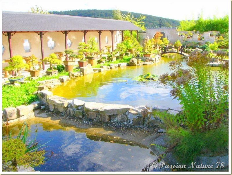 Le jardin Yili (19)