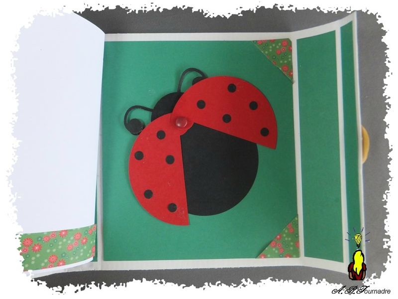 ART 2015 04 mini album coccinelle 13