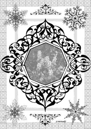 persilya_herbes_230510