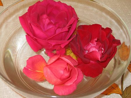 rose_ds_saladier2010_10_25__25_