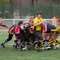 36IMG_0811T