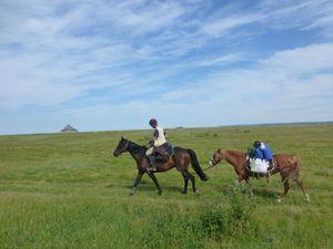 locomotion du cheval et équitation d'extérieur