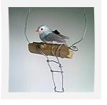 fildefer-oiseau-perchoir0