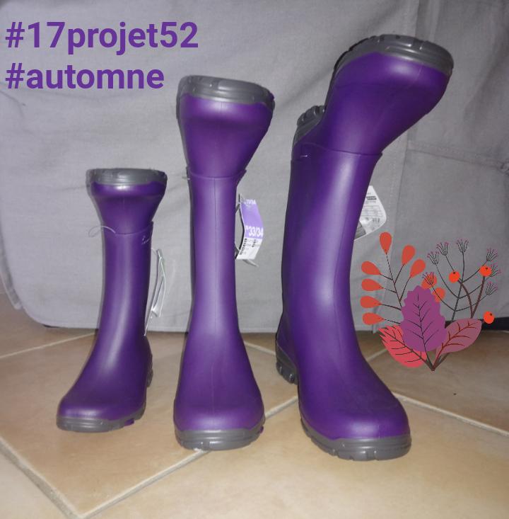 40 projet52 2017 - Automne