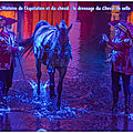 L'histoire de l'équitation et du cheval : traité de dressage du cheval de selle