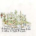 112_jardin_de_ludo353