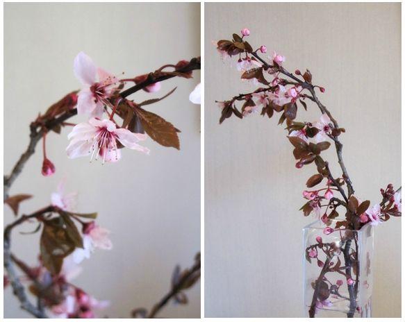Bouquet Cerisier Sakura 3