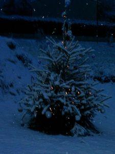 DECEMBRE 2005 (1)