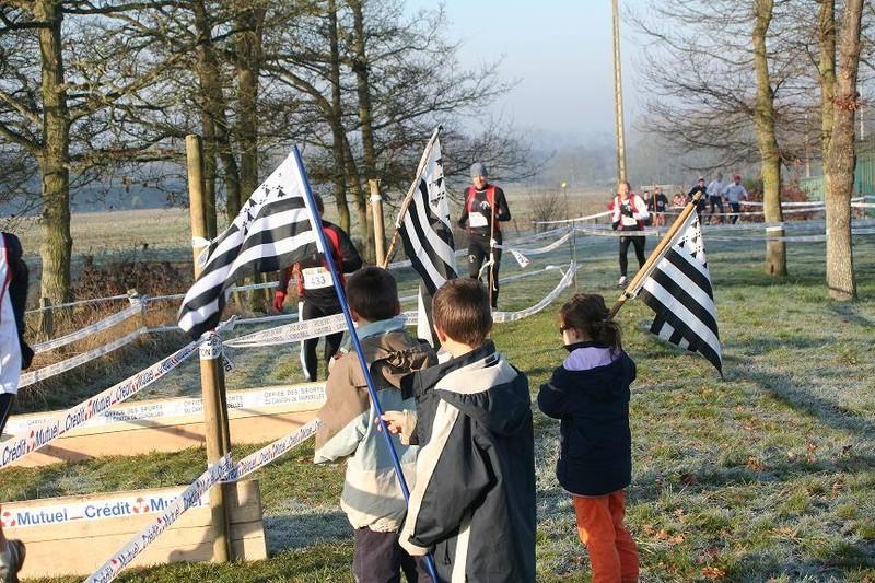 La vue des drapeaux bretons
