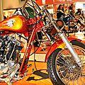 Harleys_CopyrightTasunkaphotos2014_07