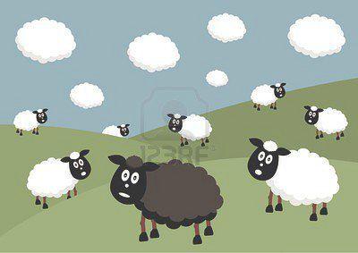 1103756-troupeau-de-moutons-avec-les-moutons-noirs-de-la