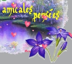 amicales