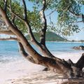 ILES GRENADINES 1996