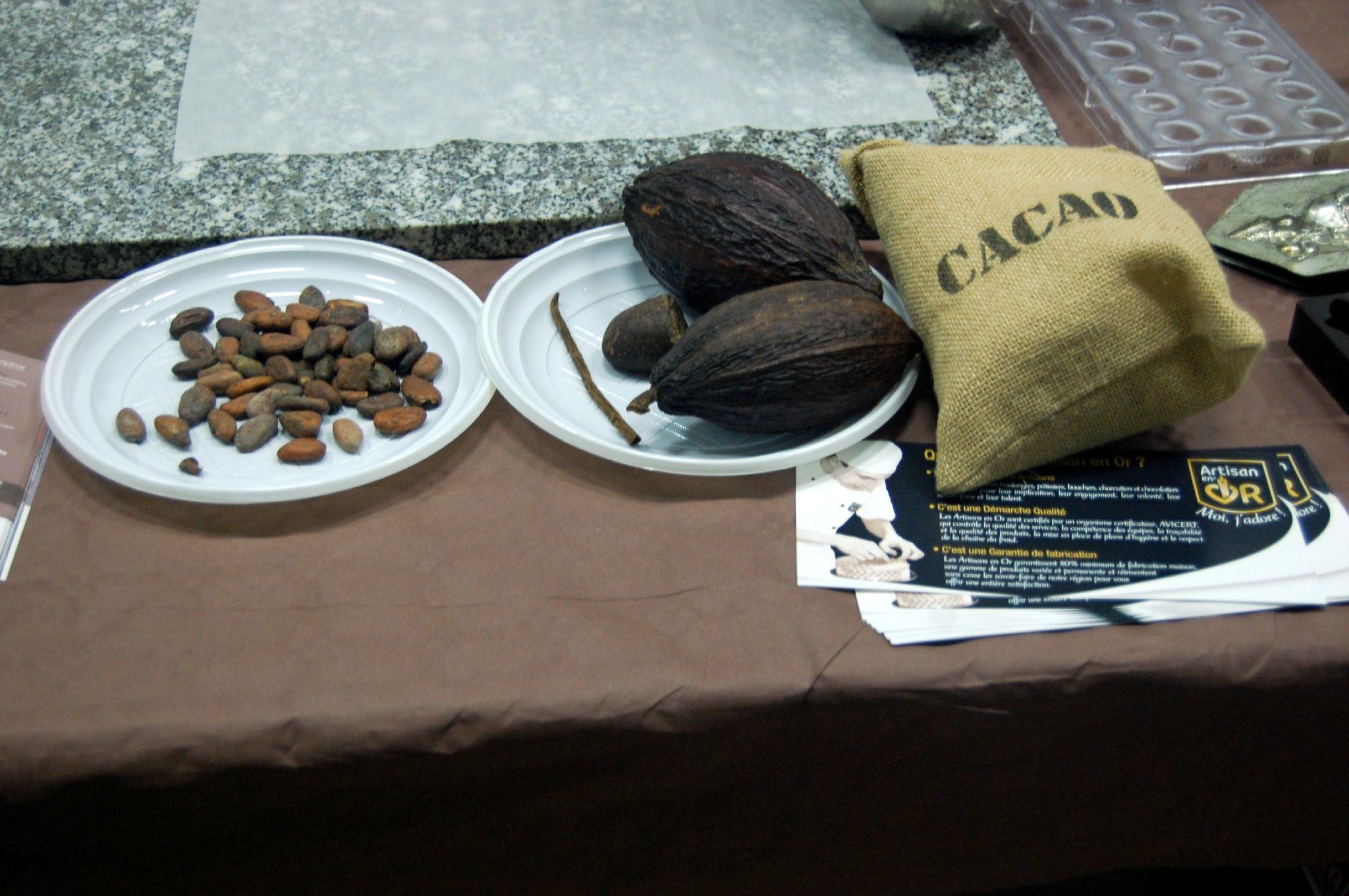 visites du 17 oct avec le chocolatier (3)
